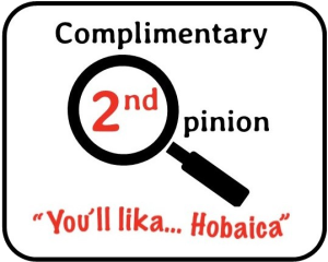 Hobaica second-opinion-logo-Color-300x240