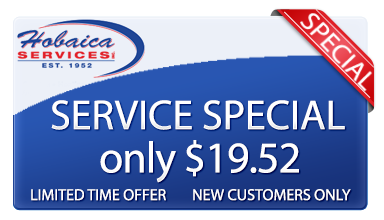 Experience why You'll Lika Hobaica with this Service Special for only $19.52.